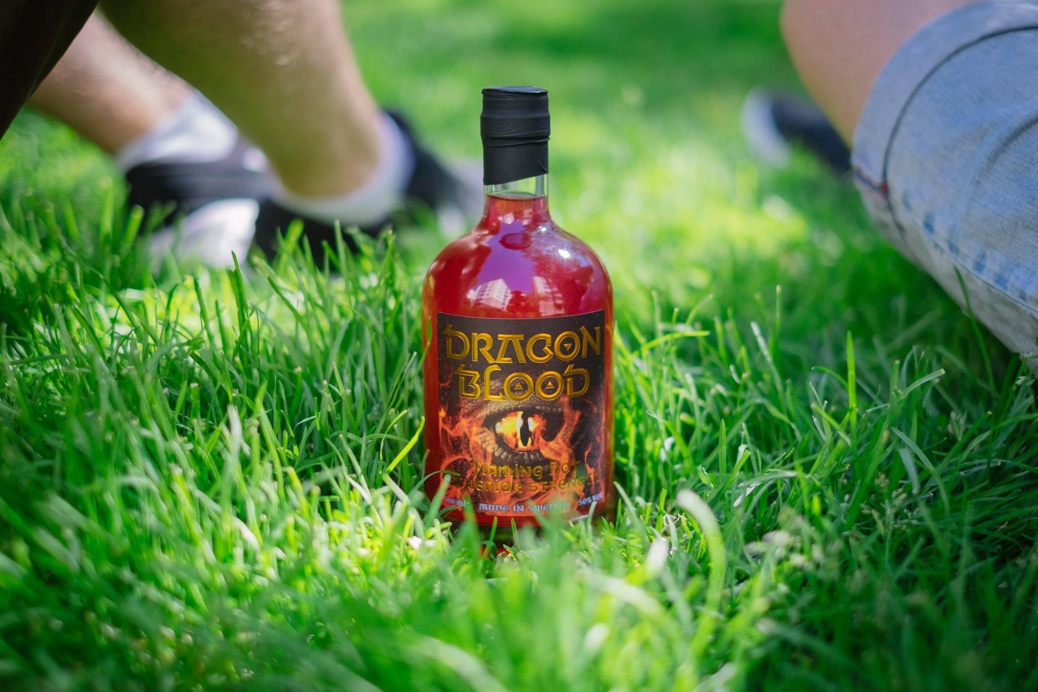 Dragon Blood hang out