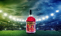 Dragon Blood at the championship