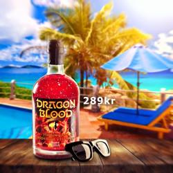 Dragon Blood summer holiday