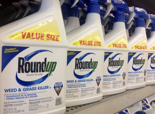 Researchers See Health Effects Across Generations from Popular Weed Killer