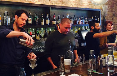 The Bartenders Boot Camp by The BarMedic
