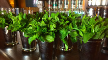 Keep Mint Fresh on the Bar Top
