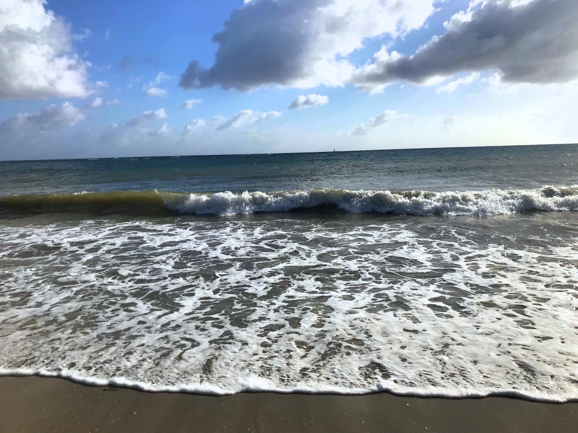 Trois Rivieres Martinique Ocean
