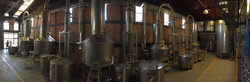 Casa Noble Still Pano