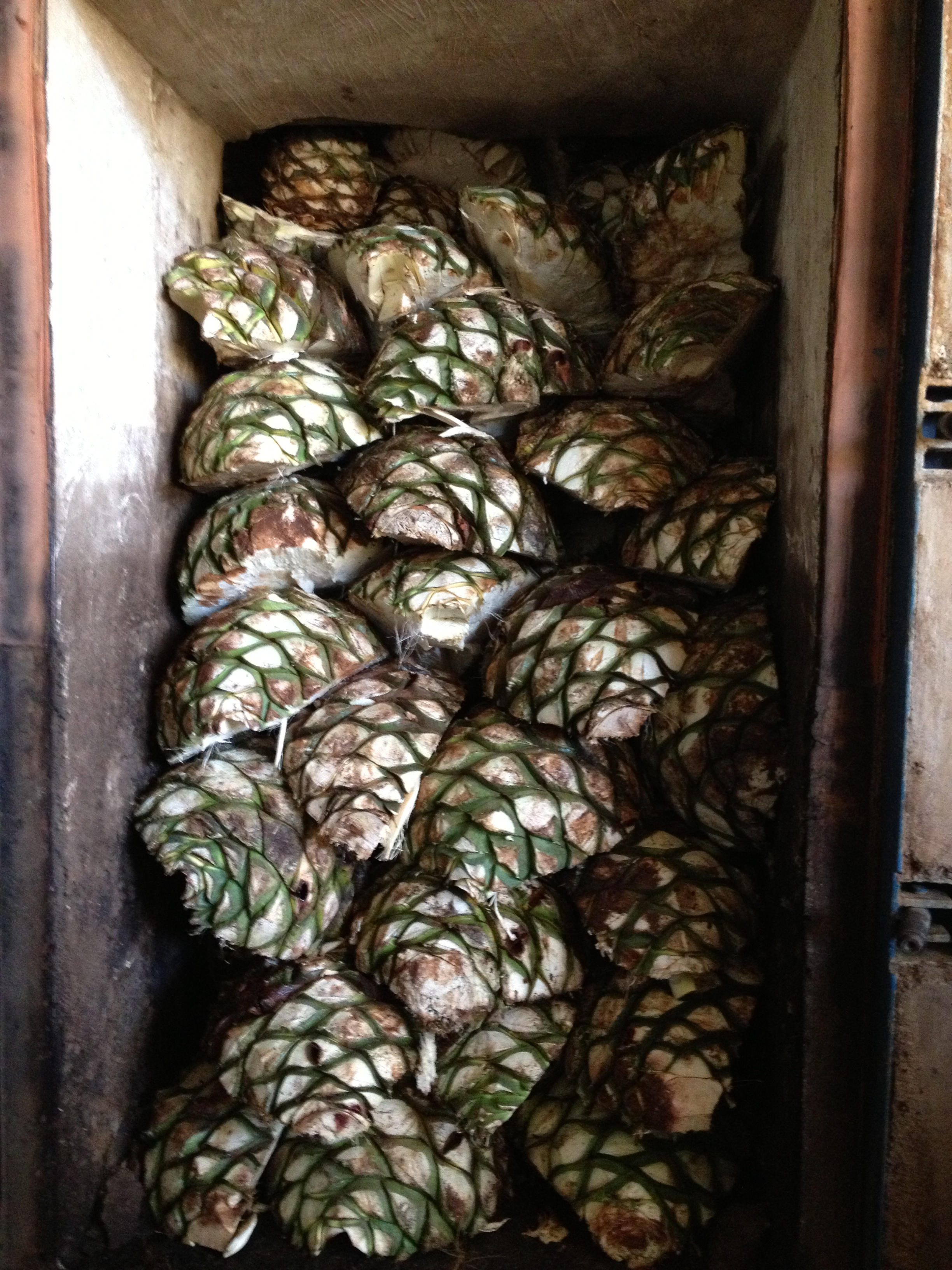 Stacked Raw Agave Oven