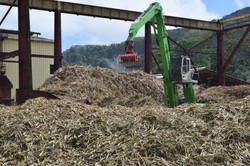 Trois Rivieres Sugar Cane 1