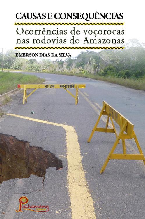 Causas e Consequências: Ocorrências de voçorocas nas rodovias do Amazonas