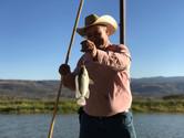 Pesca de mojarra