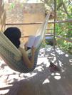 Descanso en la hamaca en las cabañas