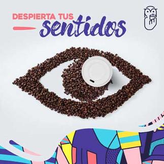 Gráfica despierta tus sentidos para Café Búho