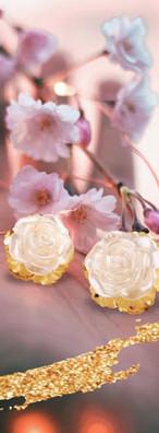 Gráfica de aros en flor para Brilho