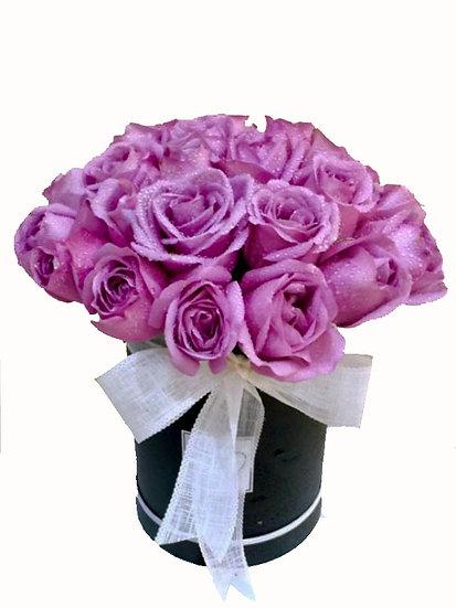 Gradient of Roses
