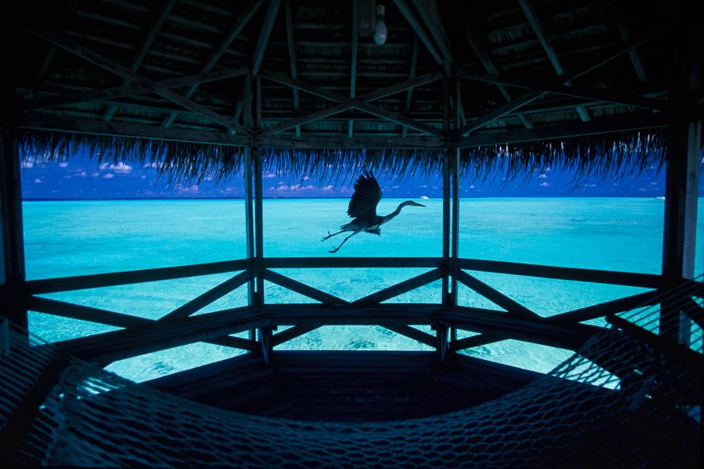 03 MALDIVES