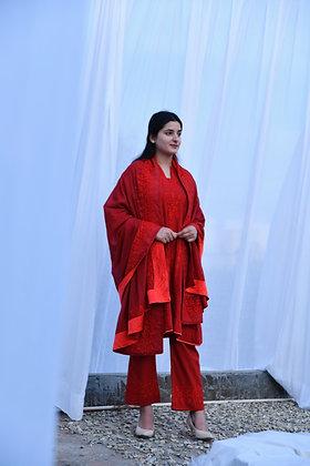 Red on Red Aari Phiran Suit