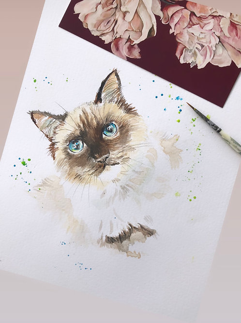 Pet Watercolours