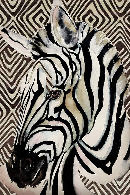 Zebra Mounted A3 Print