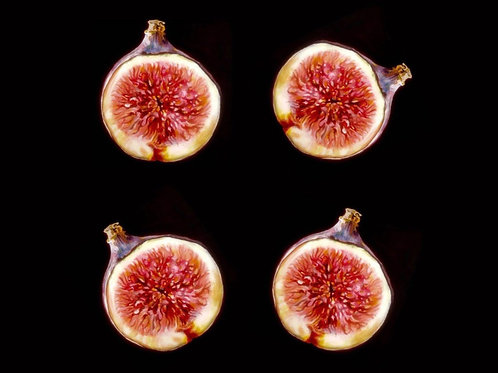 Figs Quality Art Print