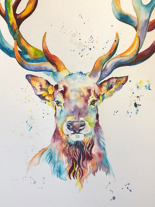 Stag watercolour Print A4