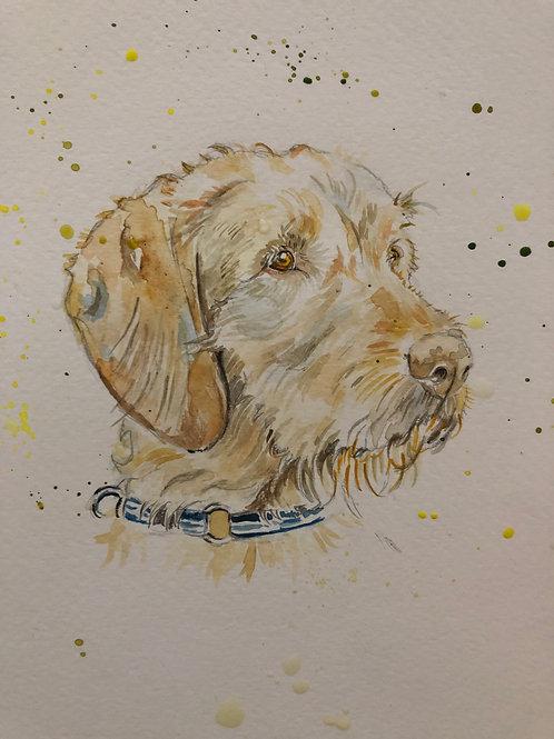 Commission a Pet Watercolour A3