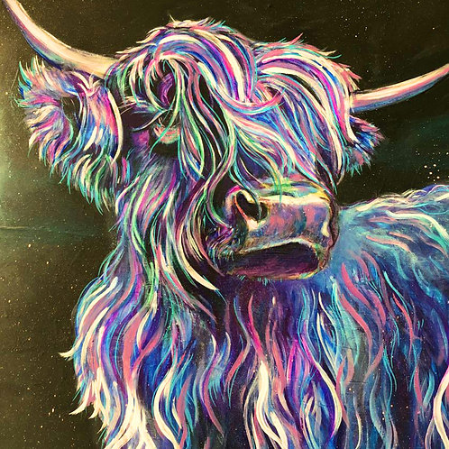 Highland Cow Mounted A3 Print