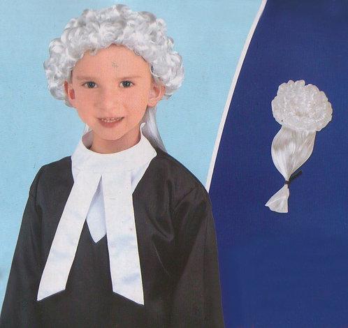 Lawyer/ judge costume