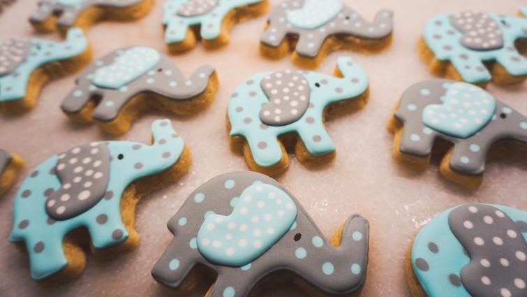 Multipleelephantcookies