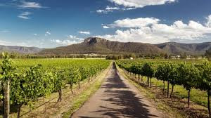 Hunter Valley with mountains,Tayla Made