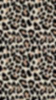 d1fa9d8180d3862b139a966d0b7cec02.jpg