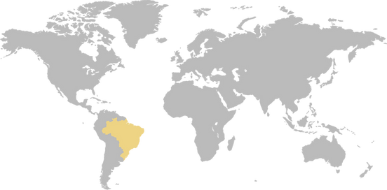 worldmap_brazilyellow.png