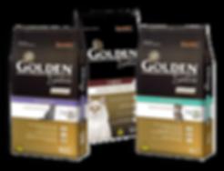 golden-gatos-min.png