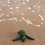 Thumbnail: TOFT MINI Kat the Turtle