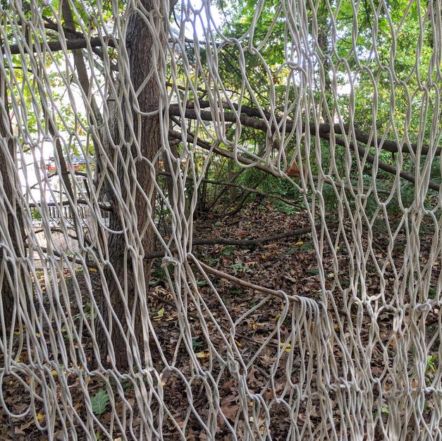 Looping Wall