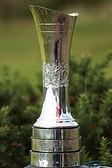 2010_Women's_British_Open_–_trophy_(1).j
