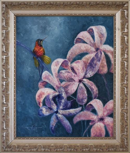 El colibrí y los jacintos / Óleo