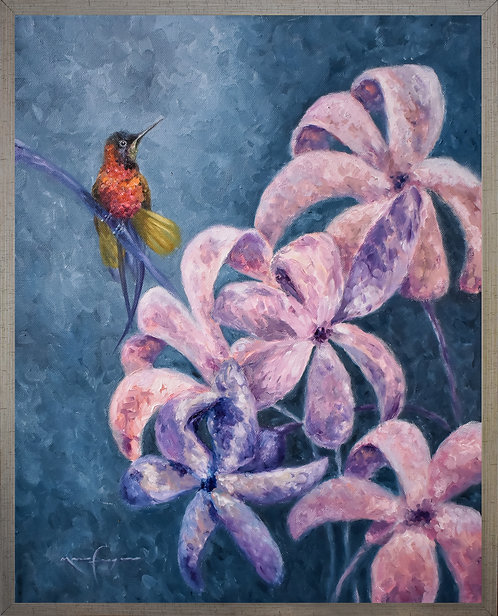 El colibrí y sus jacintos