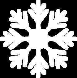 SnowFlake0.png