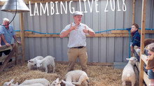 BEHIND THE SCENES..... Farmer Tom tells us his six top lambing tips.