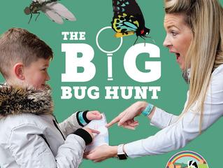 Big Bug Hunt