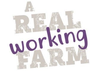 MD_real_farm_type.png