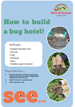 How to build a bug hotel.PNG