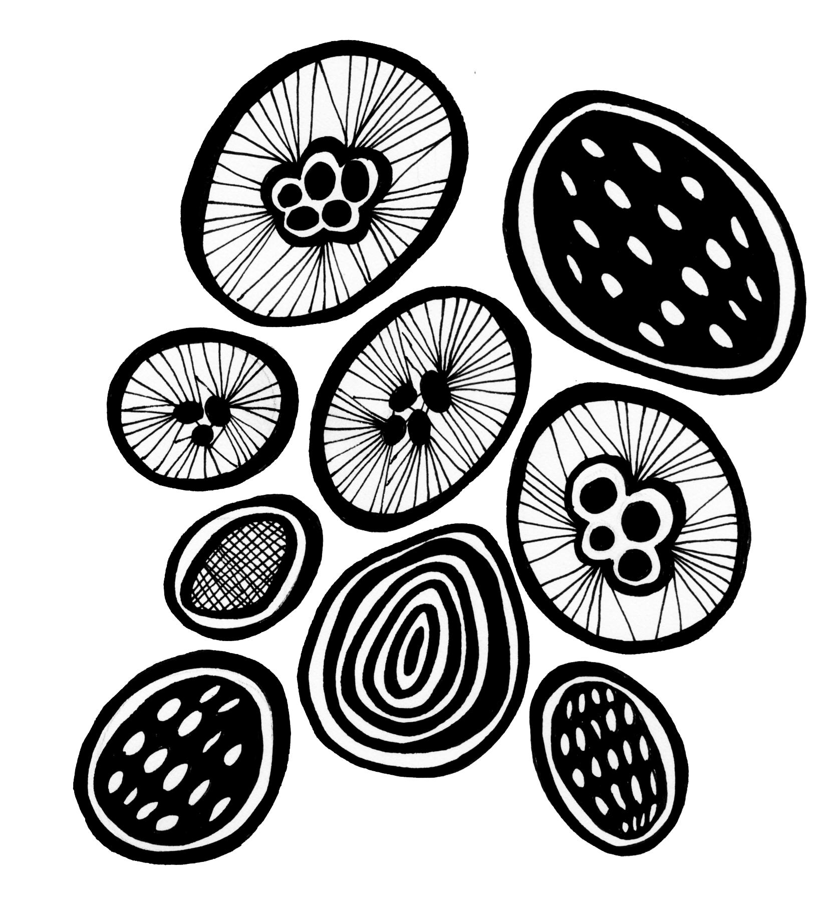 bwcircles279