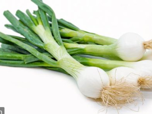 Spring Onion - White (bunch)