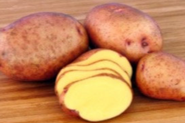 New Potatoes - Red Gold (lb)