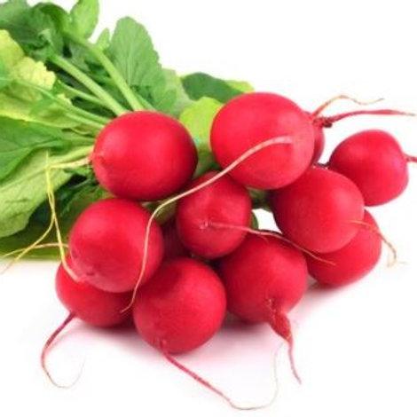 Radish - Red Round (bunch)