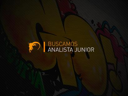 Analista Digital Jr.