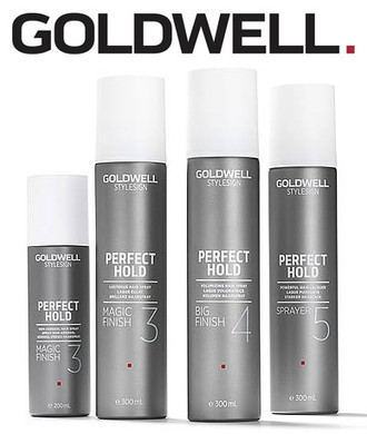 New Goldwell StyleSign - Perfect Hold