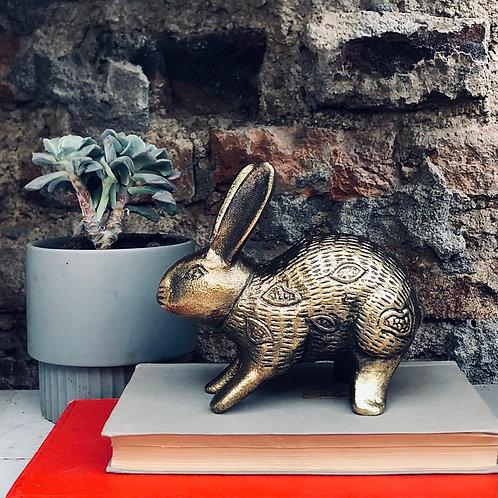 Conejo Hierro