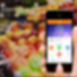 mBody360 phone.png