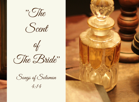 """The Scent of The Bride"""