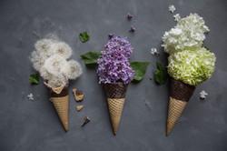 glaces-fleurs-1b